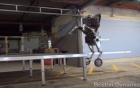 """""""Hươu cao cổ"""" robot trình diễn nhảy cao, xoay vòng"""
