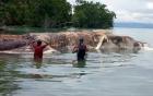 Xác quái vật khổng lồ dạt vào bờ biển Indonesia gây hoang mang