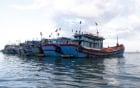5 tàu cá Việt Nam bị Indonesia bắt oan: Việt Nam lên tiếng