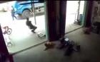 Mẹ liều mình lao sang đường cứu con, bị xe tải tông thảm khốc