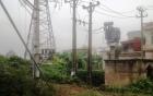 Người đàn ông bị điện giật chết thương tâm khi hái rau cạnh trạm điện 220 KV