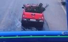 Công an trích xuất camera truy tìm ô tô trộm cây hoa hồng cổ gần 20 tuổi