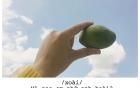 Góc bậc thầy thả thính: Cô gái trẻ dùng đủ loại trái cây thay lời yêu gửi cho crush