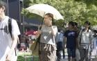 Hơn 2000 người bị sốc nhiệt ở Nhật Bản do nắng nóng