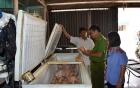 Vụ gần 400 học sinh ngộ độc phải nhập viện: Trường tiểu học ở Ninh Bình bị phạt 30 triệu đồng