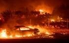 Người Mỹ khóc lóc, cầu xin Chúa khi lái xe qua biển lửa