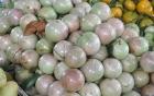 Trái vú sữa Việt tại Mỹ có giá 350.000 đồng/kg