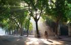 Dự báo thời tiết hôm nay 21/2: Hà Nội nắng rát, có nơi trên 34 độ C
