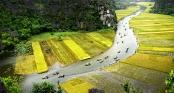Tour Tết tìm về cội nguồn Hà Nội - Tam Cốc - Bái Đính