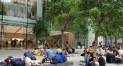 Không khí xếp hàng mua iPhone X: Từ Singapore cho đến Úc, đi đâu cũng thấy người Việt!
