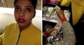 Nữ tiếp viên bị bắt tại trận vì nửa triệu USD giấu trong đống đồ dùng cá nhân
