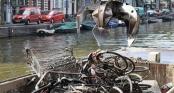 Câu xe đạp như câu cá trên kênh rạch ở Hà Lan: Thành quả 15.000 chiếc/năm