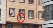 Clip: Phút nghẹt thở cứu sống em bé 2 tuổi rơi từ cửa sổ tầng 3