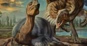 Hỏi khó: Vì sao khủng long nặng hàng tấn vẫn có thể ung dung ngồi ấp mà không sợ làm vỡ trứng phía dưới?