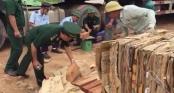 Quảng Trị: Hơn nghìn thanh gỗ quý ngụy trang trong lô hàng phế liệu