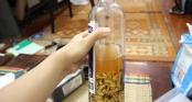 Tự ý ngâm rượu rễ cây, nấm độc uống: 15 người tử vong