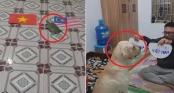 Chó, rùa trổ tài tiên tri kết quả trận chung kết lượt đi của đội tuyển Việt Nam và Malaysia