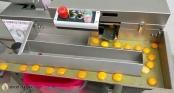 Máy tách lòng đỏ với lòng trắng trứng không tì vết, có thể tách 1.800 quả/1h