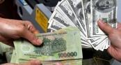 Tỷ giá ngoại tệ 15/2/2019: USD treo cao, tăng 14 đồng so với phiên trước