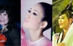 3 nghệ sĩ ứng cử đại biểu HĐND TP đều trúng cử