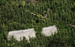 Phát hiện bộ lạc nguyên thủy tại vùng rừng Amazon