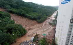 Hình ảnh kinh hoàng trận lở đất ở Hàn Quốc