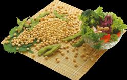 Món ăn từ đậu nành: Ngon, rẻ mà bổ.