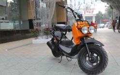 Honda Zoomer 2013 - xe tay ga không cần bằng lái