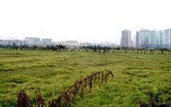 Căn cứ để xác định thuế sử dụng đất phi nông nghiệp