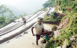 Tận cùng khổ nhục của người vượt biên sang Trung Quốc làm thuê