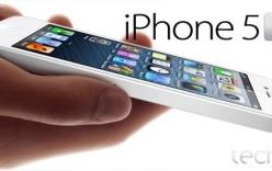 iPhone 5S sẽ có màn hình lớn hơn