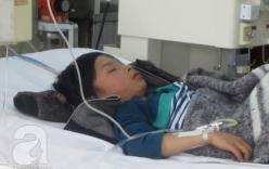 Vụ ngộ độc nấm Thái Nguyên: 1 bệnh nhân tử vong, thêm 5 bệnh nhân phải cấp cứu