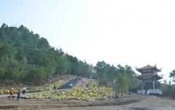 Xây nhà ga đường sắt gần khu mộ Đại tướng Võ Nguyên Giáp