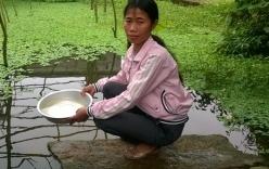 Nam Định: Ngư dân