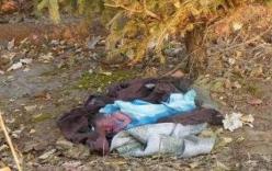Phát hiện trẻ sơ sinh chết trong túi xách bên đường ray xe lửa