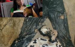 Thẩm mỹ viện Cát Tường: Nhận diện chất lạ bao bọc trên thi thể chị Huyền