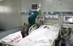 Việt Nam phát hiện virut cúm có độc lực cao từng gây chết người