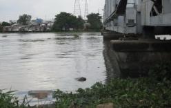 Bản tin 113 – ngày 20/8: Thi thể người đàn ông bị cột bao đá nổi trên sông Sài Gòn…