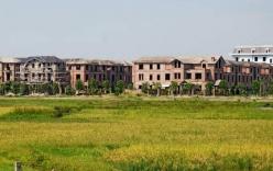 Tăng gấp đôi khung giá đất đô thị tại Hà Nội và Tp.HCM