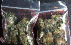Hy hữu: Bưu phẩm ma túy được gửi đến đúng lúc cảnh sát đang khám nhà