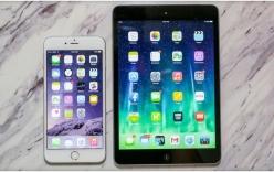 "iPhone 6 Plus - ""kẻ cắp"" doanh thu của iPad mini"