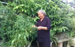 Cụ ông sinh con ở tuổi 80: Bỏ phố lên rừng để làm văn hóa