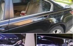 Lam Trường bị đập vỡ kính xế sang cướp của giữa ban ngày