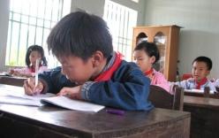 Bỏ chấm điểm cho 7 triệu HS: Cô giáo mệt phờ 'tô hoa'