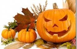 Tại sao quả bí ngô là biểu tượng của lễ hội Halloween?
