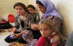 """Cuộc sống """"như súc vật"""" của các cô gái Yazidi rơi vào tay IS"""