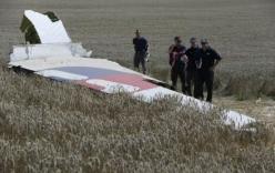 Nhiều nhân chứng khẳng định nhìn thấy máy bay lạ khi MH17 bị bắn hạ