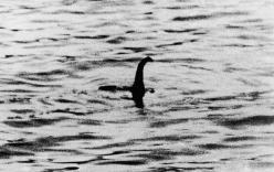 Thêm ảnh lộ đầu quái vật hồ Loch Ness?