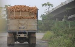 Hà Nội: Vi phạm chở quá tải, lòi thêm tội gây tai nạn