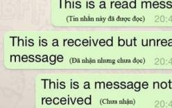 Ly hôn vì vợ đọc tin nhắn nhưng không trả lời